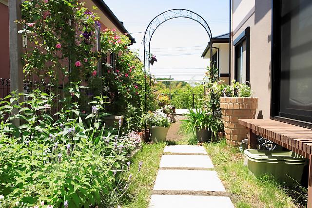 一戸建て 庭 after