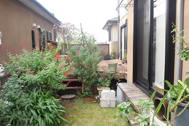 一戸建て 庭 before